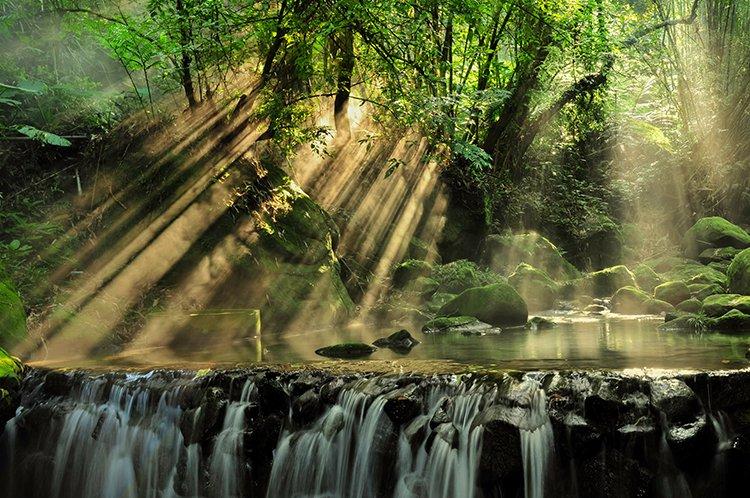 Green energy image by Arnie Chou on Pexels